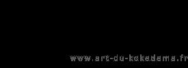 logo art du kokedama
