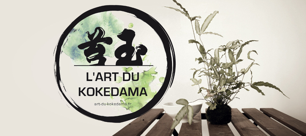 kokedama art floral japonais
