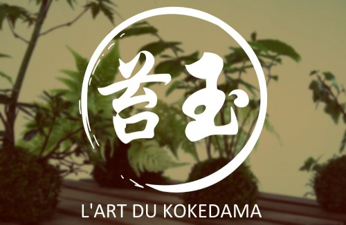 kokedama style japonais